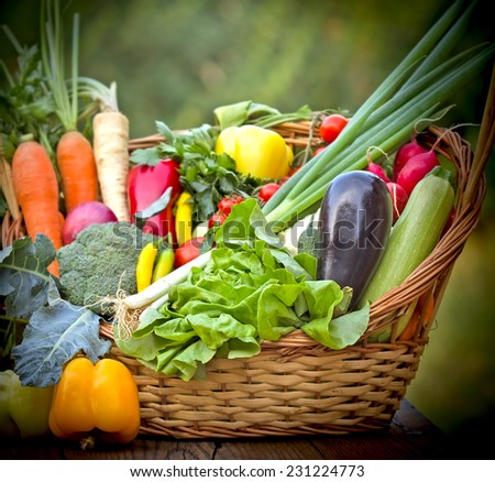 Healthy, fresh organic food - vegetables - stock photo