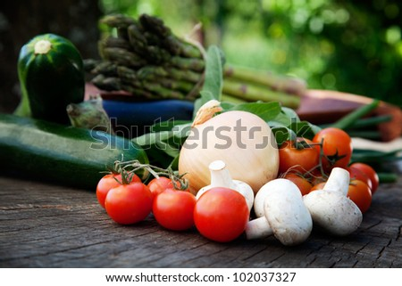 Healthy fresh vegetables ingredients for cooking in rustic setting: tomatoes, asparagus,zucchini,mushrooms,herbs and eggplant - stock photo