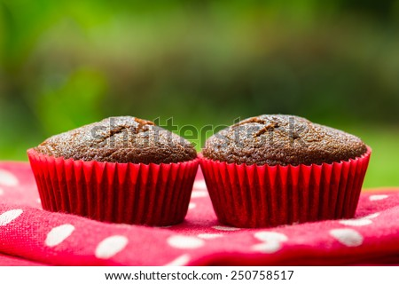 Healthy gluten free chocolate cupcakes - stock photo