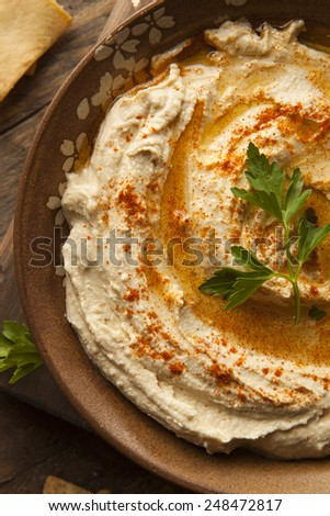 Healthy Homemade Creamy Hummus with Olive Oil and Pita Chips - stock photo