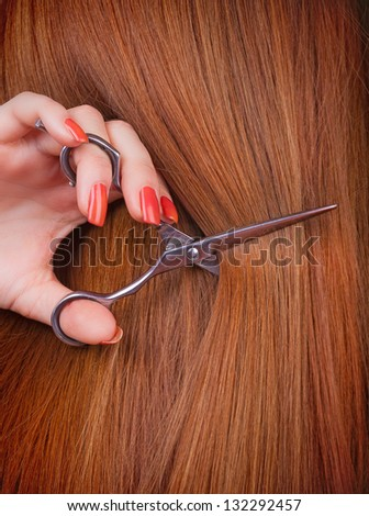 Healthy long brown hair and scissors - stock photo