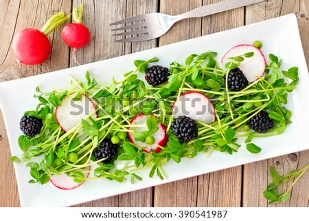 Healthy salad with pea shoots, radishes, blackberries on white rectangular plate on rustic wood table - stock photo