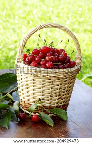 healthy sour cherries for a better life - stock photo