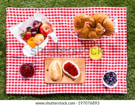 Healthy summer picnic laid out on a fresh red and white checked country cloth on green grass with croissants, jam, fresh fruit, butter and blueberries, overhead view - stock photo