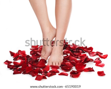 Healthy Woman's Legs and Rose Petals over white. - stock photo