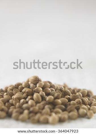 Heap coriander seeds on white sack cloth - stock photo