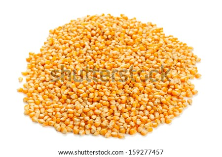 Heap of dried corn kernels on white background - stock photo
