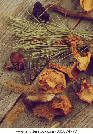 Heap of Dried Forest Chanterelles, Porcini and Boletus Mushrooms with Dry Grass, Leafs and Fir Stems on Rustic Wooden background. Retro Style - stock photo