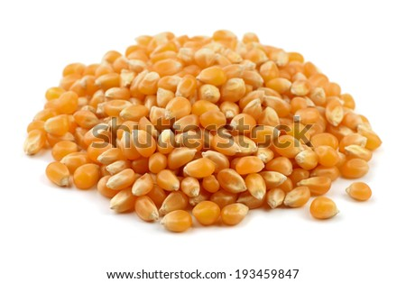 Heap of dry popcorn seeds isolated on white - stock photo