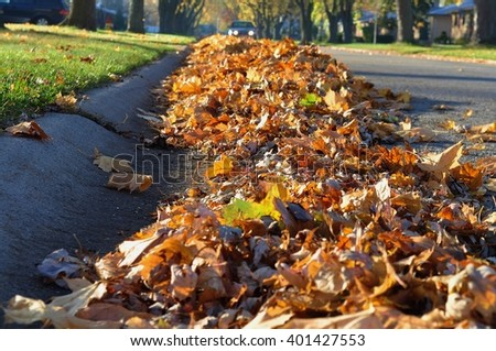 Heap of fallen leaves along the curb. - stock photo