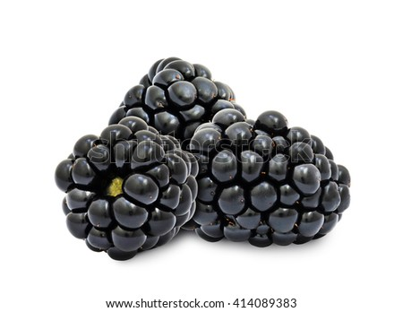 Heap of fresh ripe blackberry berries without leaves isolated on white background. Design element for product label, catalog print, web use. - stock photo