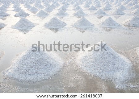 Heap of sea salt in original salt produce farm make from natural ocean salty water preparing for last process before sent it to industry consumer - stock photo