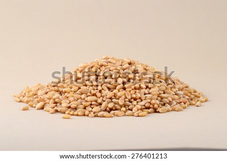 Heap of Wheat grains   - stock photo