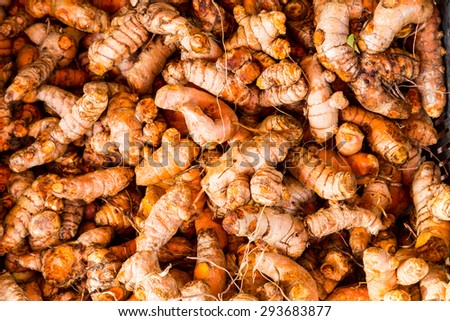 Heaps of freshly harvested turmeric roots - stock photo