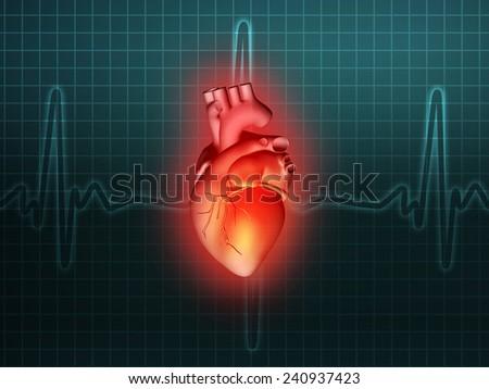 heart disease 3d anatomy illustration health turquoise - stock photo