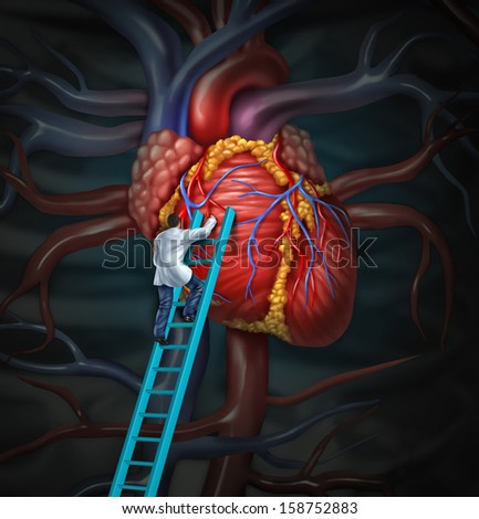 Heart doctor  therapy health care and medical concept with a surgeon or cardiologist  climbing a ladder to monitor and inspect  the human cardiovascular anatomy for a hospital diagnosis treatment. - stock photo