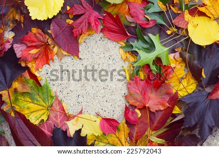 Heart in autumn leaves on the sidewalk.  Main focus on the leaves - stock photo