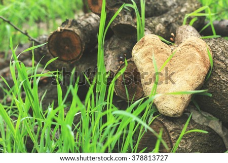 heart of stone spring summer selective focus blurred background  - stock photo