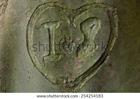 heart on a wood - stock photo
