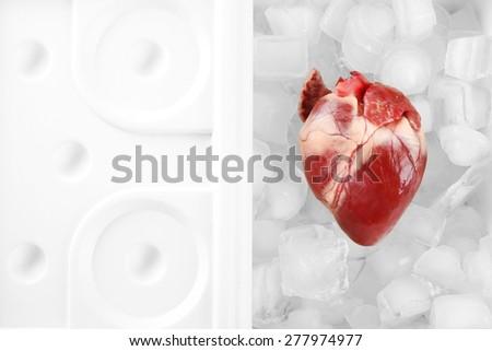 Heart organ in fridge close up - stock photo