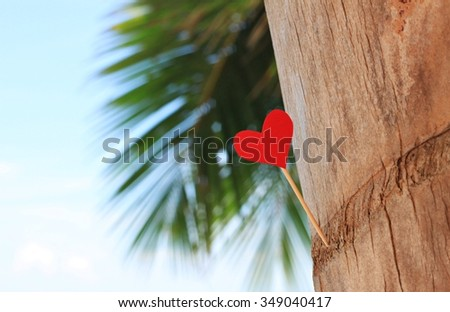 Heart red paper on palm tree, love message. Tropical romantic vacation. Empty space with palm tree leaves - stock photo