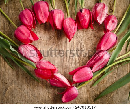 heart-shaped frame of fresh tulips laying on an old rustic wooden background - stock photo