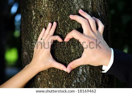 Heart Shaped Hands - stock photo