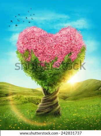 Heart shaped tree in the meadow - stock photo