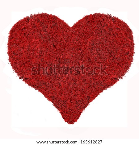 heart symbol from red moss isolated on white background - stock photo