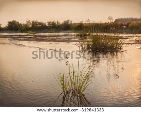 Heat waves in 2015 led to the shallowing of rivers of Ukraine. Grouse River in the forest-steppe part of Ukraine Poleska - stock photo