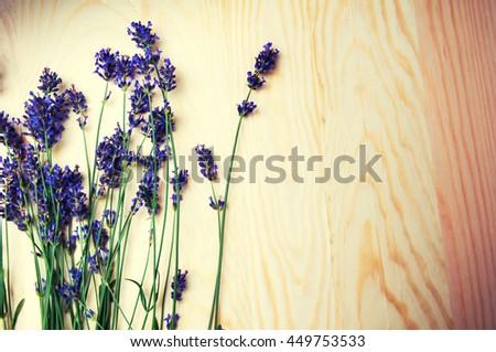 Heather flowers frame on blue background - stock photo
