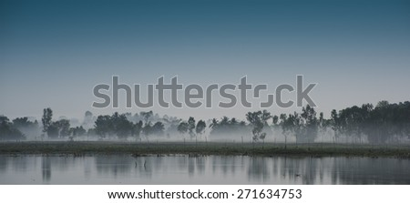 Heavy mist forming in trees round lake Thailand Stormy Weather Global Warming - stock photo