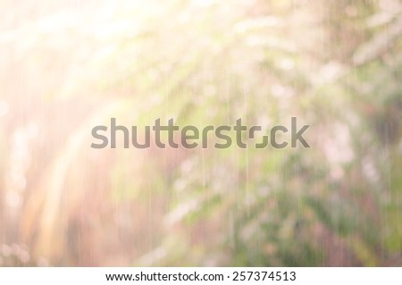 Heavy rain on trees.blurry - stock photo