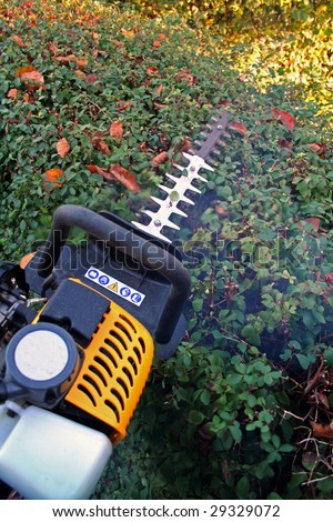hedge cutter trimming. petrol machine for gardening and prune foliage - stock photo