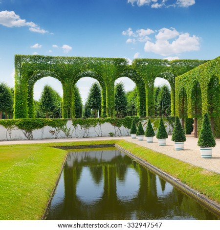 hedge in a summer park - stock photo