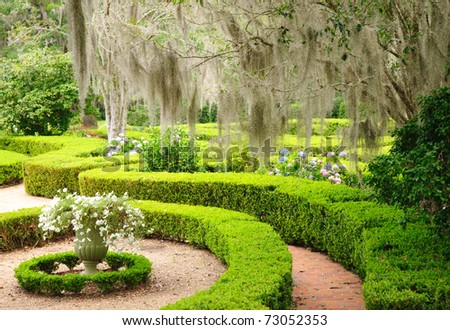 hedge maze garden - stock photo