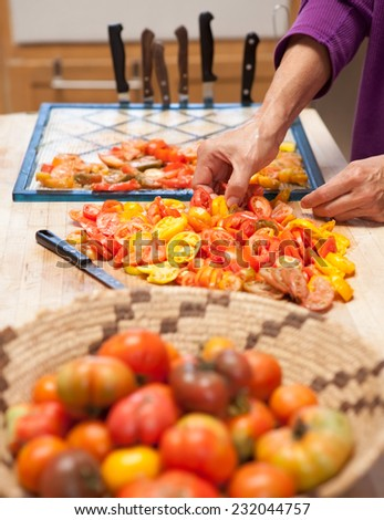 Heirloom tomatoes prepared for dehydrator drying - stock photo