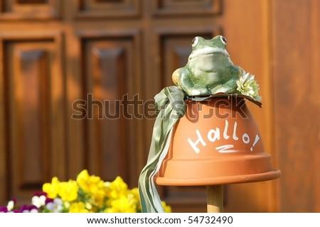 Hello Frog - stock photo
