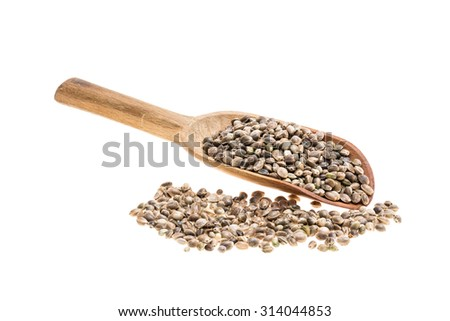 Hemp seeds on a wooden spoon with handle to the left isolated on white - stock photo