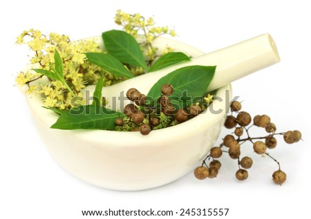 Henna leaves with flower and seeds in a mortar - stock photo
