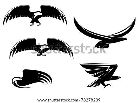 Heraldry eagle symbols and tattoo isolated on white, such a logo. Vector version also available - stock photo