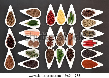 Herb and spice collection in white porcelain dishes over slate background. - stock photo