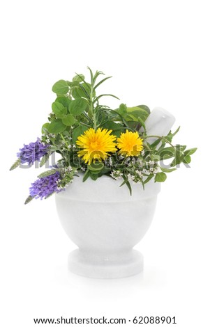 Herb and wildflower selection of lavender, thyme, rosemary, marjoram and dandelion flowers in a marble mortar with pestle, isolated over white background. - stock photo