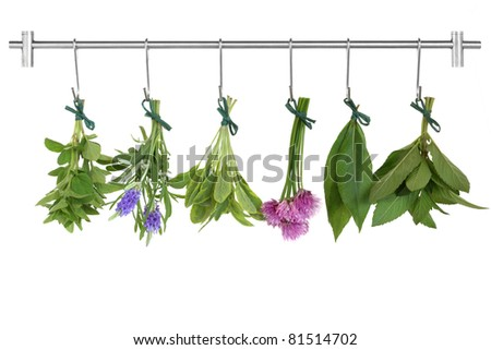 Herb leaf and flower sprigs tied in bunches drying on a stainless steel rack with hooks, oregano, lavender, variegated sage, chives, bay and mint, isolated over white background. - stock photo