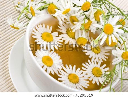 Herbal chamomile tea - stock photo