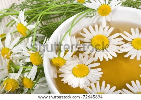 Herbal chamomile tea isolated on white background - stock photo