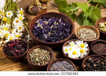 Herbal medicine  - stock photo