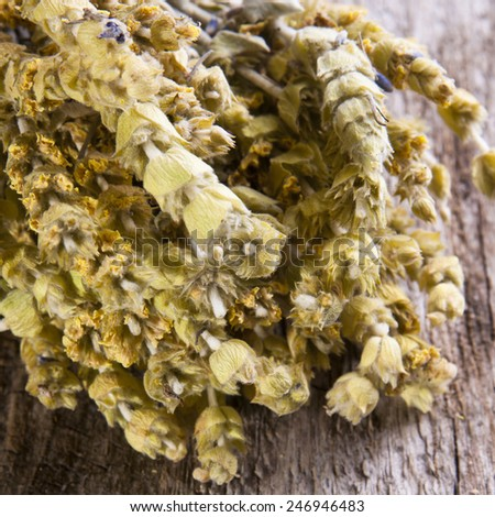 Herbal medicine series: Sideritis taurica flowers on wooden background - stock photo