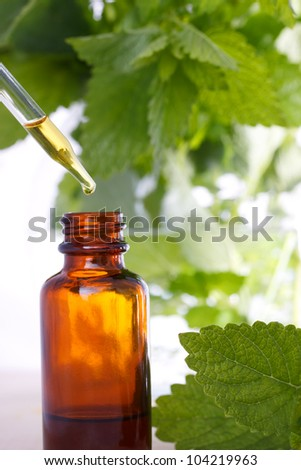 Herbal medicine with dropper bottle and mints - stock photo