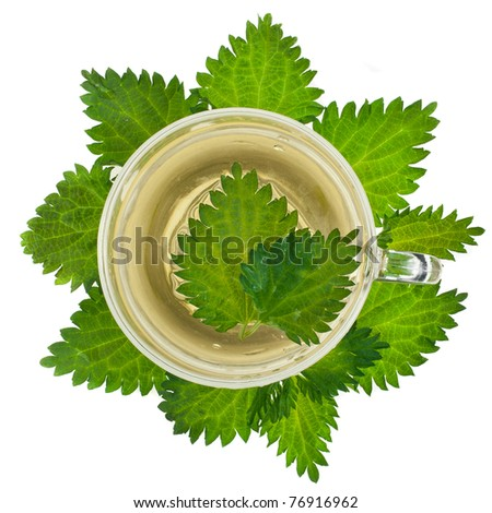 Herbal nettle tea cup on white background - stock photo